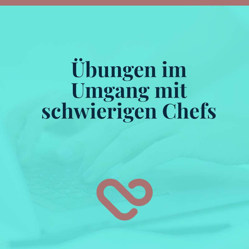 16-schwieriger Chef Umgang mit schwierigem Chef, Argumente schwieriger Chef3